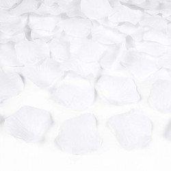 Canon à confettis pétales blanche