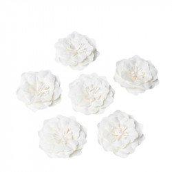 Fleurs adhésives  ivoire - 5 cm (x6)