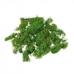 Mousse naturelle semi sèche 50gr