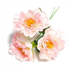 Bouquet de 3 pivoines rose dégradé